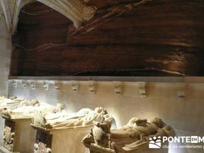 Enología en Rioja - Senderismo Camino de Santiago - Santa María la Real (Najera); senderos en mala